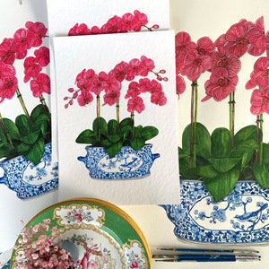 Blue and white chinoiserie planter with pink orchids
