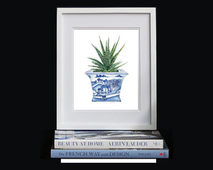Blue and white chinoiserie square planter with succulent cactus