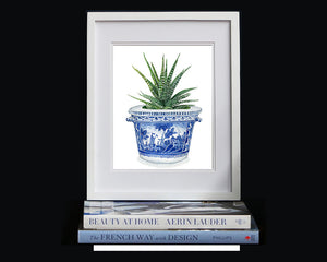 Classic blue and white 18th c. faience pot from Nevers, France with cactus