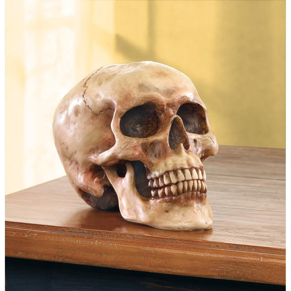 GRINNING SKULL-Escritt Home Decor