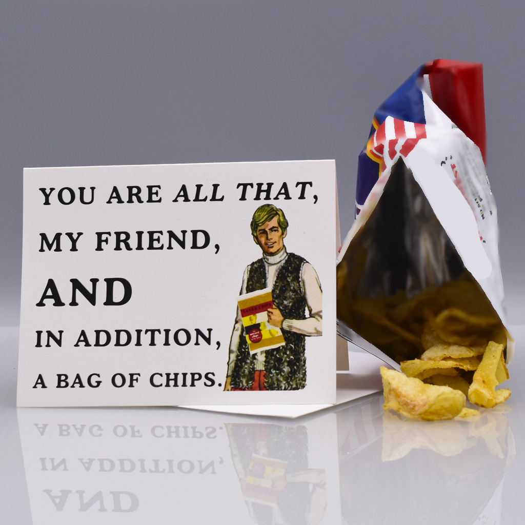 Bag of Chips Friendship Card - WHOLESALE 6-PACK