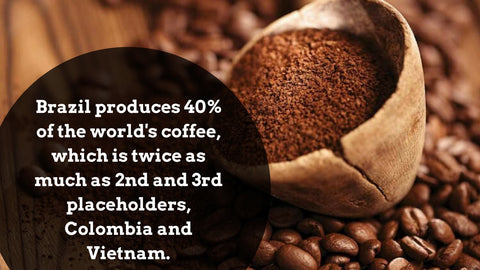 coffee-ground-facts