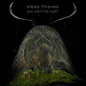 Sleep Thieves: You Want the Night (Vinyl LP)