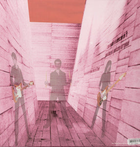 Blonde Redhead: In An Expression of the Inexpressible (Vinyl LP)
