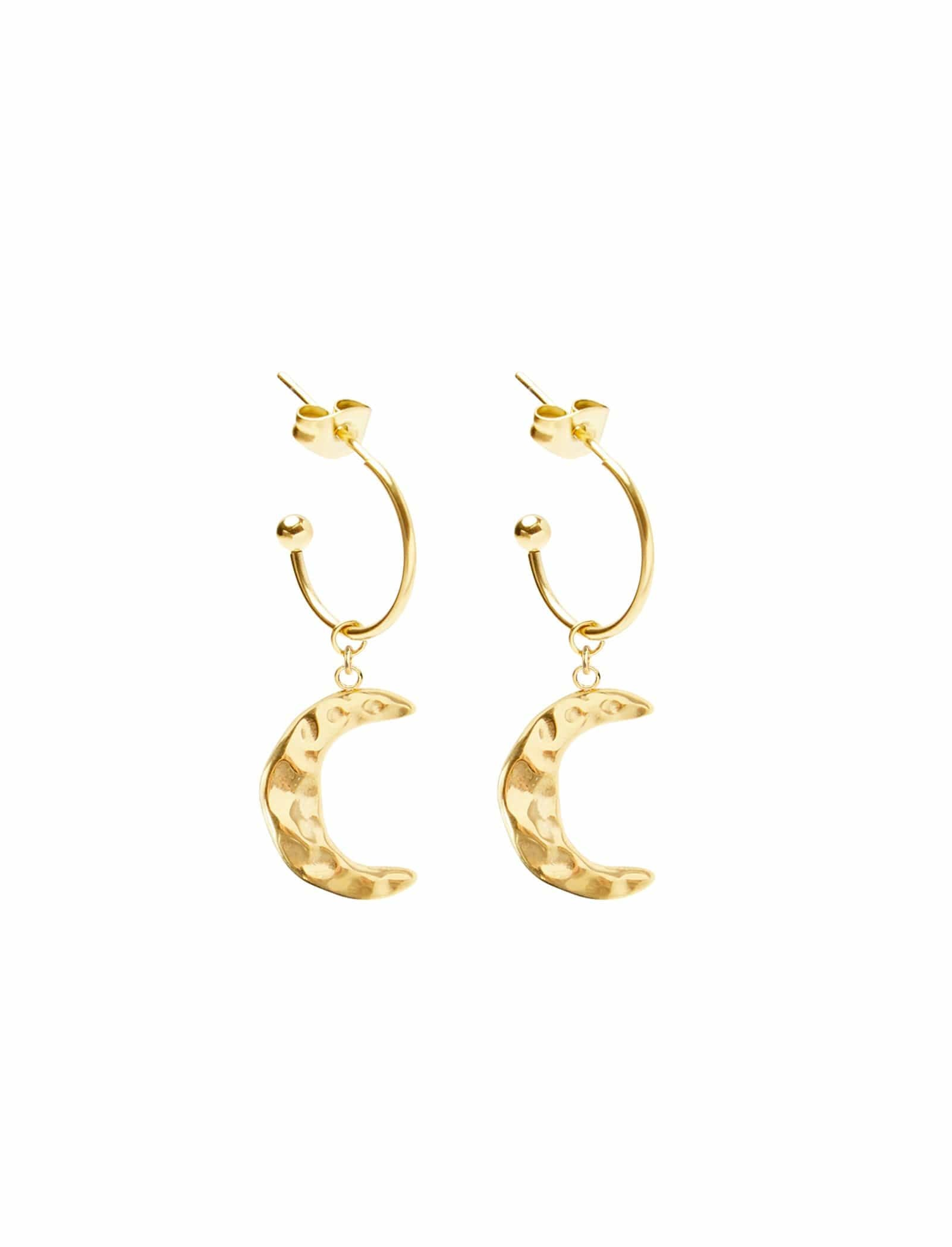 Midnight Moon Earrings