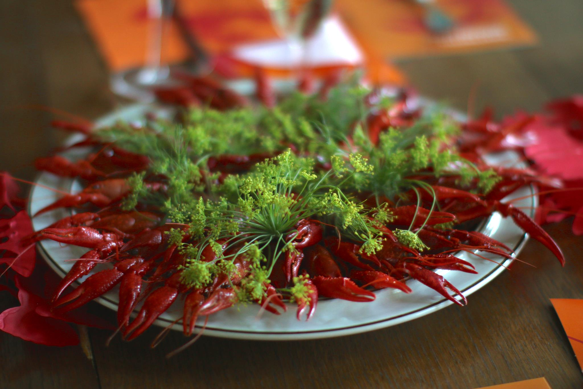 Dill: Perfect Summer Herb