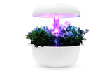 Blooming Light Smart Garden