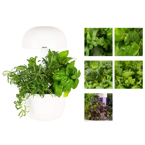Indoor Smart Garden Bundle Deal