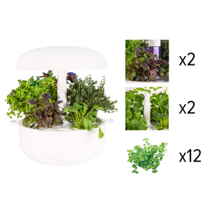 Plantui Smart Garden Adventurer Bundle