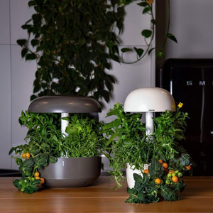 Plantui Smart Garden Duo Bundle Jungle