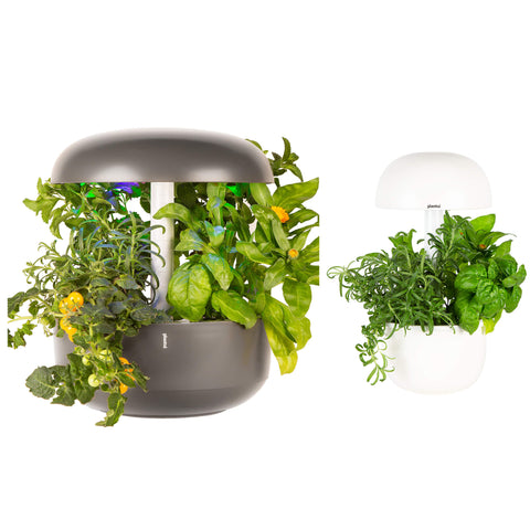 Plantui Smart Garden Duo Bundle Grey