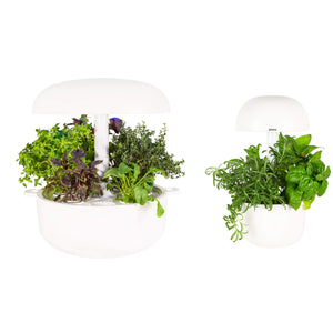 Plantui Smart Garden Duo Bundle White