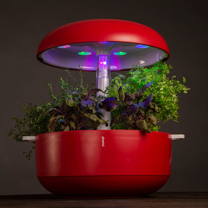Plantui 6 Smart Garden Red Lights