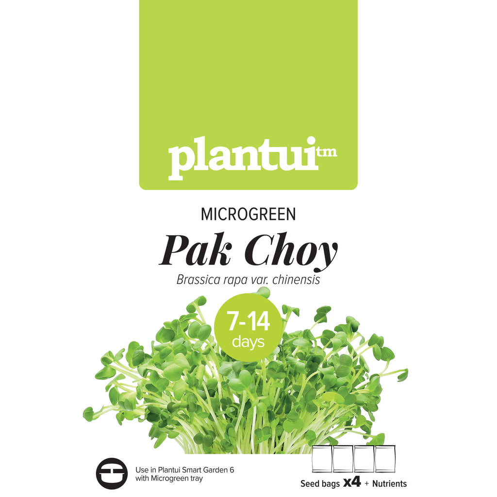 Plantui MICROGREEN Pak Choi Packaging