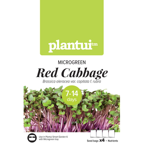 Plantui MICROGREEN Red Cabbage Packaging
