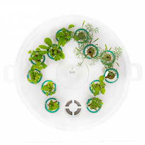Plantui Pre-Grow Tray Indoor Garden Accessory Lifestyle