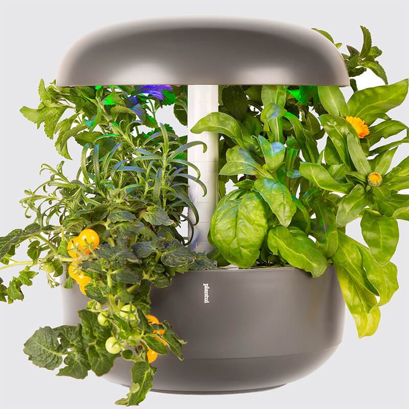 Plantui Smart Garden 6 Indoor Garden Grey