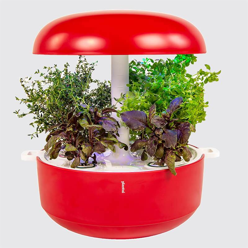 Plantui Smart Garden 6 Indoor Garden Red