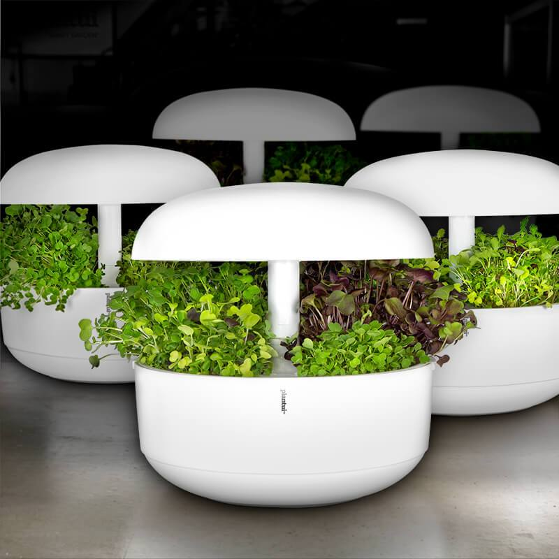 Plantui Smart Microgreens Lifestyle