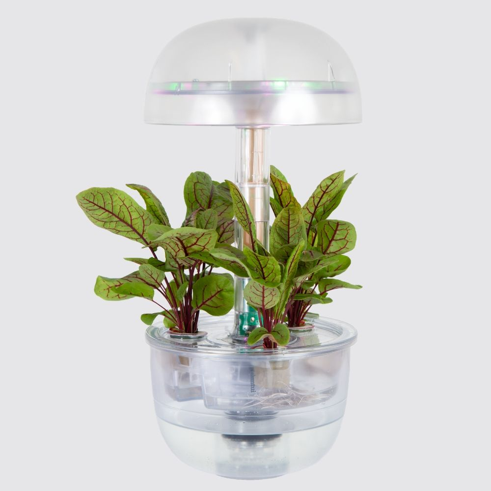Plantui Smart Garden 3e Transparent Indoor Garden