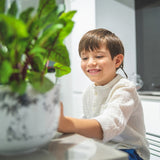 A kid growing plants in the kitchen with Moomin Garden