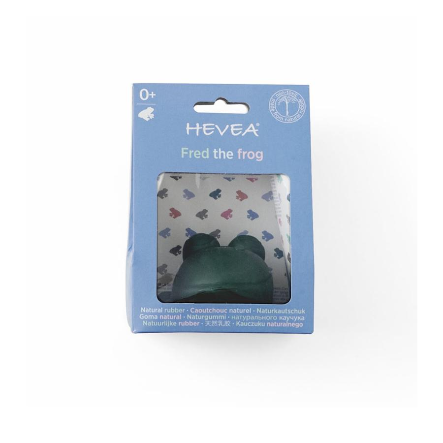 "Bath Toy ""Fred the Green Frog"""