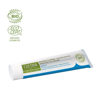 Daily Protection Propolis Toothpaste - French Beauty Co.