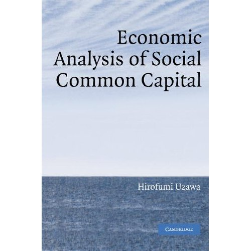 Economic Analysis of Social Common Capital