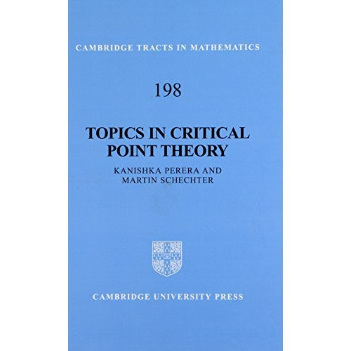 Topics in Critical Point Theory (Cambridge Tracts in Mathematics)