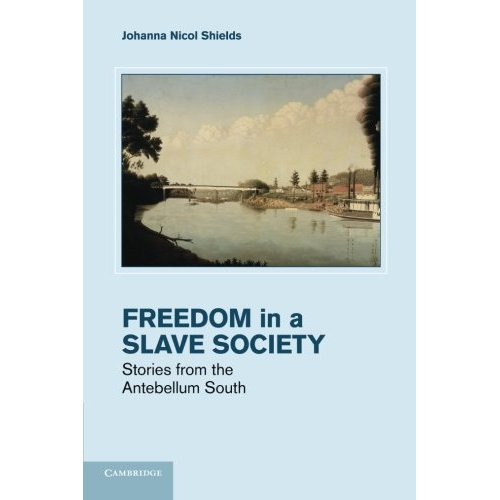 Freedom in a Slave Society: Stories From The Antebellum South (Cambridge Studies on the American South)