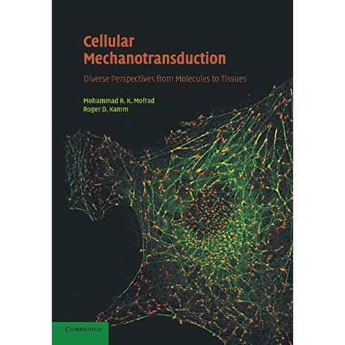 Cellular Mechanotransduction: Diverse Perspectives from Molecules to Tissues