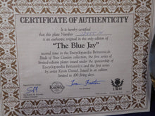 Encyclopedia Britannica Birds of our Garden Collection The Blue Jay by Kevin Daniel