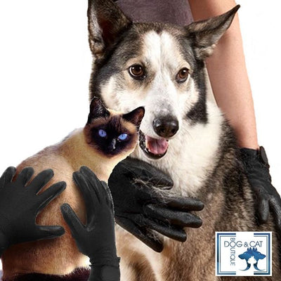 GANTS ANTI POILS PERFORMANCE - Dog & Cat Boutique