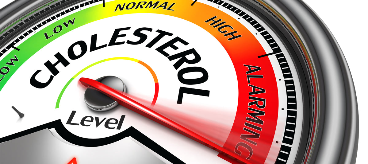 You Need To Know What To Do When Diet Doesn't Lower Cholesterol?