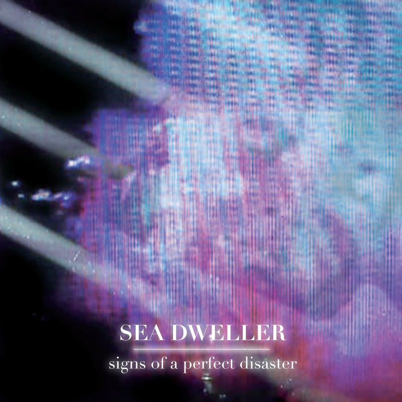 SIGINS OF A PERFECT DISASTER(CD)