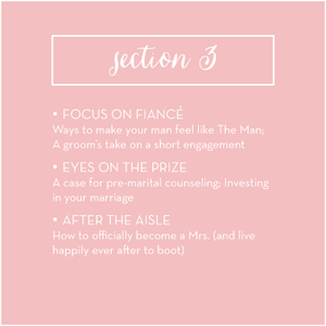 Section 3 overview: How to Plan Your Wedding in Six Months or Less