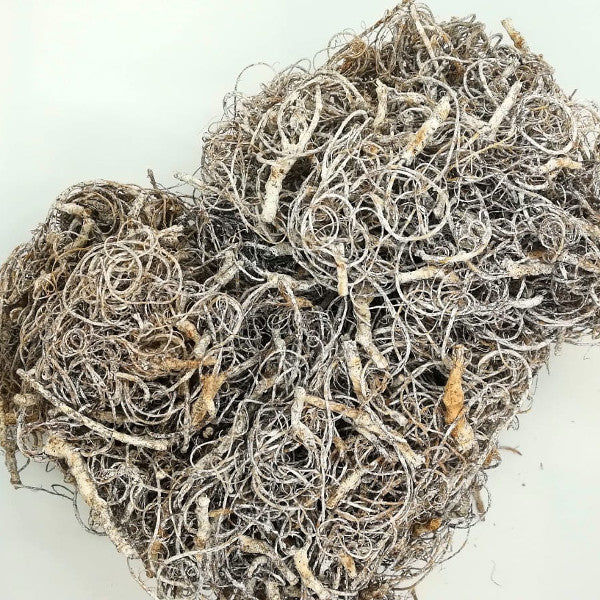 Curly Moss - White Wash - 130 gr