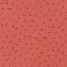 Moda Fabrics Compassion - Shirting (46257 20)