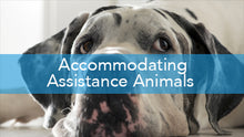 E2L: Accommodating Assistance Animals Series