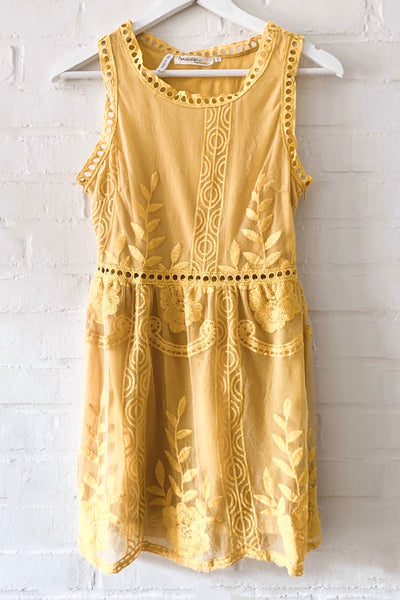 Mini Lace Embroidered Sleeveless Dress