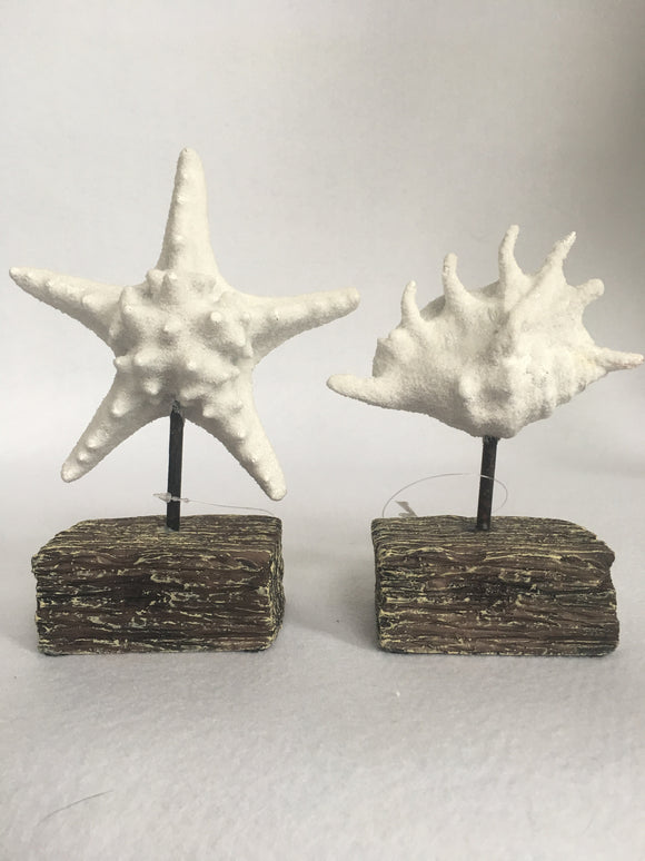 Beach White Starfish or White Shell Block Sitter
