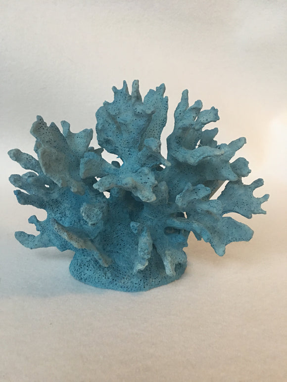 Beach Medium Blue Coral