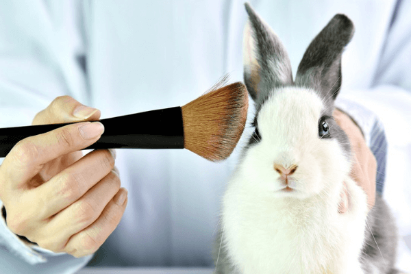 China Ends Post-Market Animal Testing For Cosmetics