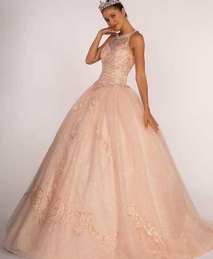 Cyber Week Special Price Blush Jeweled Bodice and Embroidered Ball Gown