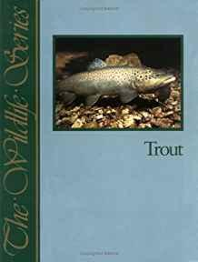 Trout (Wildlife Series)