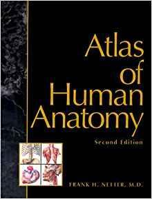 Atlas of Human Anatomy, 2nd Edition