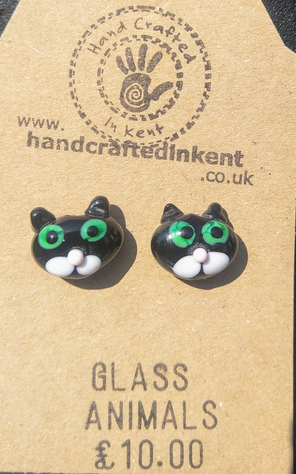 Black and White Cat Heads