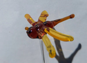 Orange Dragonfly Swizzle Stick