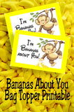 I'm Bananas About You! This printable bag topper will show you how much this Valentine's day.  Simply print off the bag topper, add some candy bananas or dried bananas slices to a bag, and then add your To and From to the back for an easy class valentine perfect for boys or girls.