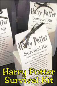 Create a fun Harry Potter party favor for your Harry Potter party with this printable Harry Potter survival kit.  With all the treats you'll need to survival another year at Hogwarts, your favorite Harry Potter fan will love this Survival Kit printable.